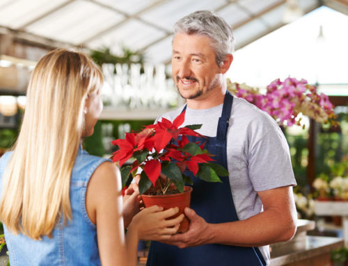 Estate Planning and the Small Business